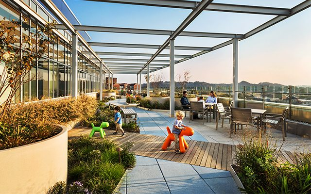 East Tennessee Children S Hospital Roof Garden Crja Ibi