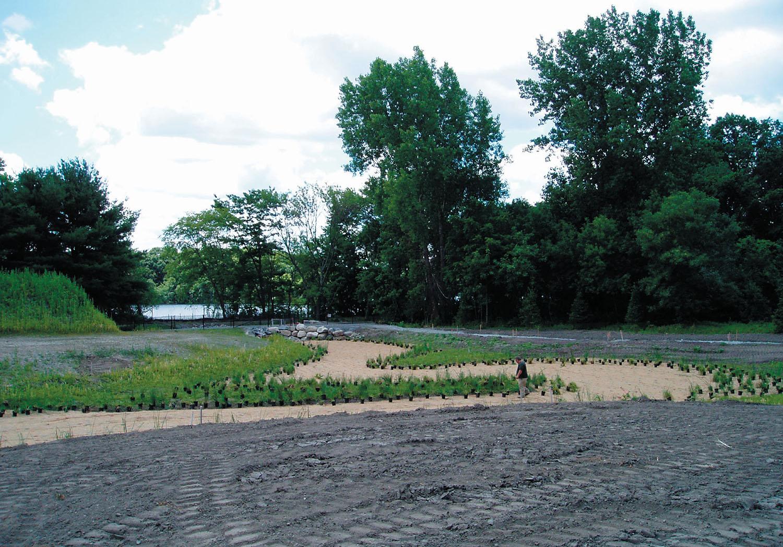 Fresh-Pond-12