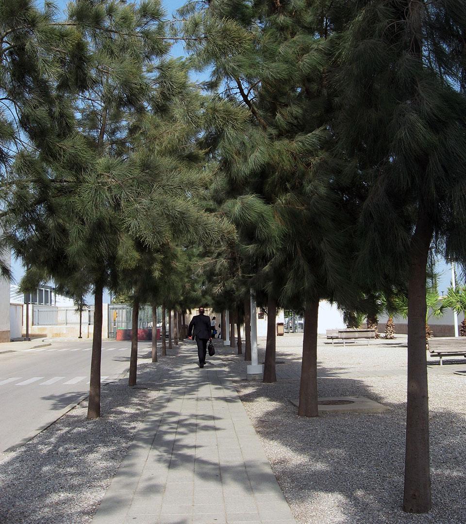 Tunis_embassy_9